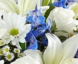 Scarletts Flowers Sympathy Blue and White