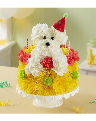 Birthday Wishes Flower Cake™ Pupcake Flower Arrangement