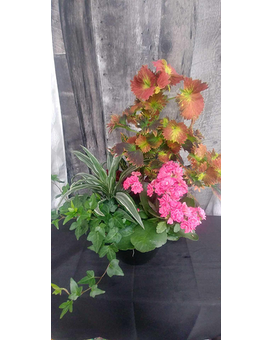 Small Garden Dish Flower Arrangement