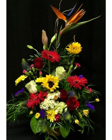 Tropical modern Flower Arrangement