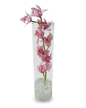 Love Encased Flower Arrangement