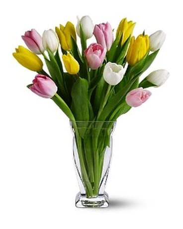 15 Mixed Tulips - Colors Will Very Flower Arrangement