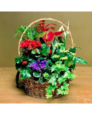 Guinevere's Garden Basket Arrangement