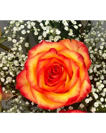 Circus Roses Flower Arrangement