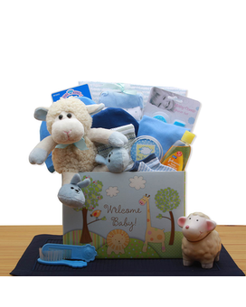 Welcome New Baby Blue Gift Basket
