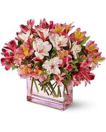 Teleflora's Always Alstroemeria Flower Arrangement