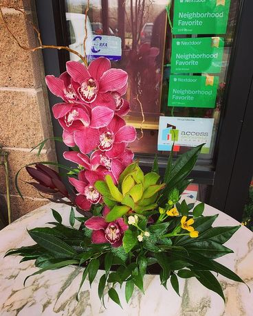 Rocky Mtn. Tropics Flower Arrangement