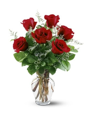 6 Red Roses - by Ollie's Flowers Inc. Flower Arrangement