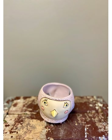 Baby Birdie Planter Custom product