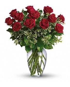 Always on My Mind- Long Stemmed Red Rose [T64-1AA} Flower Arrangement