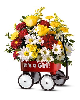 Teleflora's Baby's First Wagon - Girl Flower Arrangement