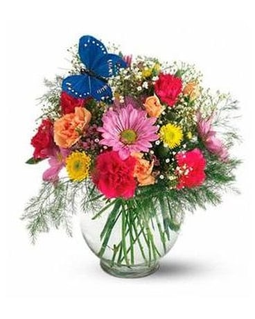 Teleflora's Butterfly & Blossoms Vase Custom product