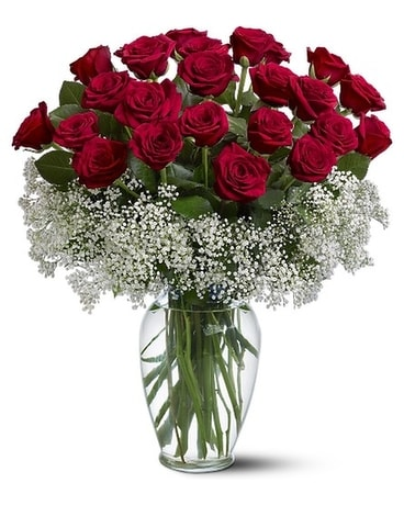 2 Dozen - Field of Roses Flower Arrangement