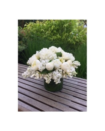 Fabulous White And Green Delivery Bellevue Wa City Flowers Inc