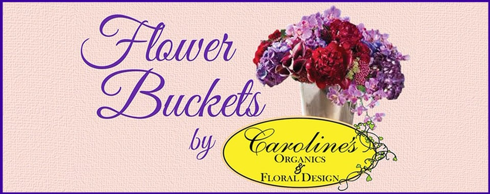 Flower Buckets by Caroline's Organics & Floral Design