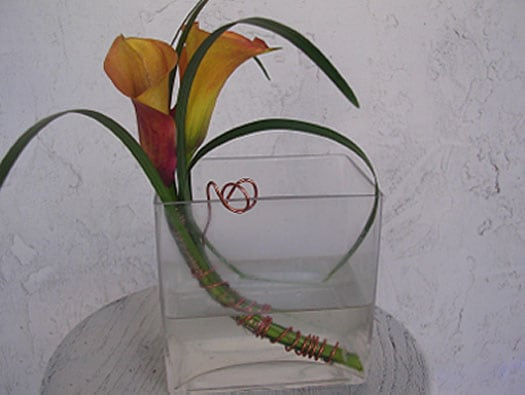 simple contemporary calla lilies