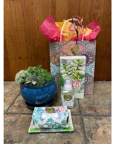 Succulent Lover Gift Set Gifts