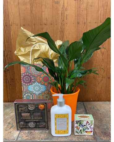 Everyday Plant Gift Set Gifts