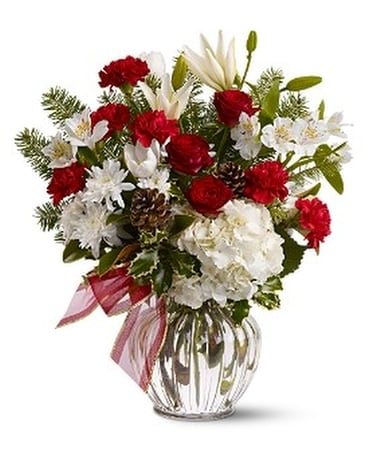 Christmas Tradition                       TFWEB255 Flower Arrangement