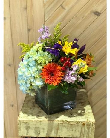 Merrick florist flower delivery by merrick flower shoppe fruiterers sun kissed flower arrangement negle Choice Image