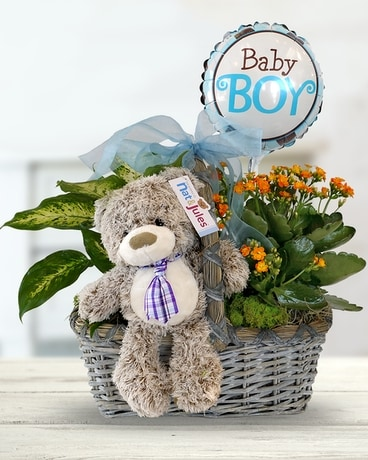 Baby Boy Plant Basket