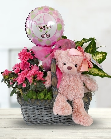 Baby Girl Plant Basket