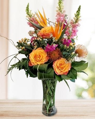In Bloom Flowers Arlington Plano Mckinney Lewisville Carrollton