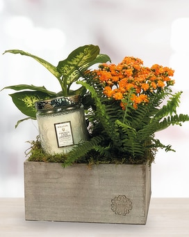 Candle Planter Flower Arrangement