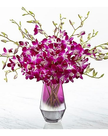 FTD Pink at Heart Orchid Bouquet Flower Arrangement