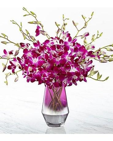Ftd Pink At Heart Orchid Bouquet Dans Chelsea Mi Chelsea Village