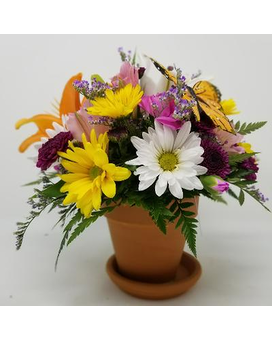 Spring Butterfly Garden Flower Arrangement