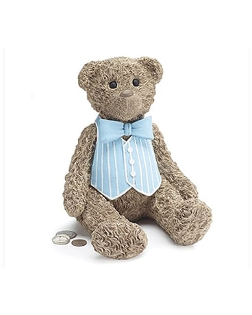 Teddy Bear Bank Boy