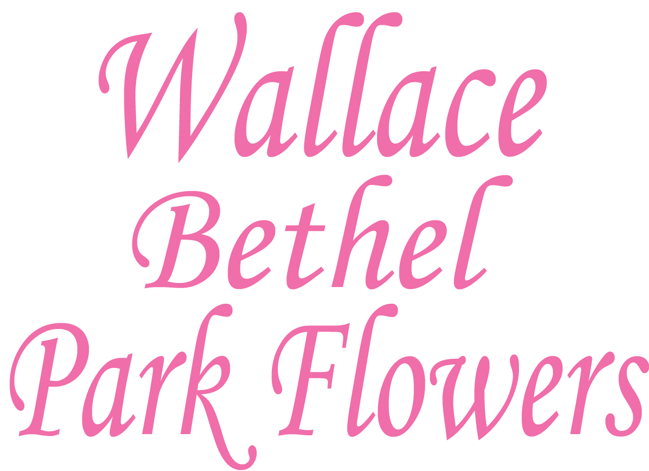 Pretty Please In Bethel Park Pa Bethel Park Flowers