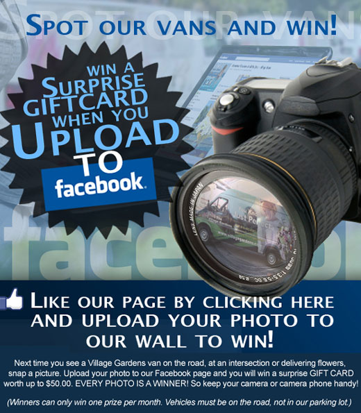 Spot our vans and win!