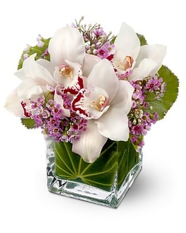 eleflora's Lovely Orchids Flower Arrangement