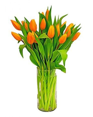 orange sunset tulips Flower Arrangement