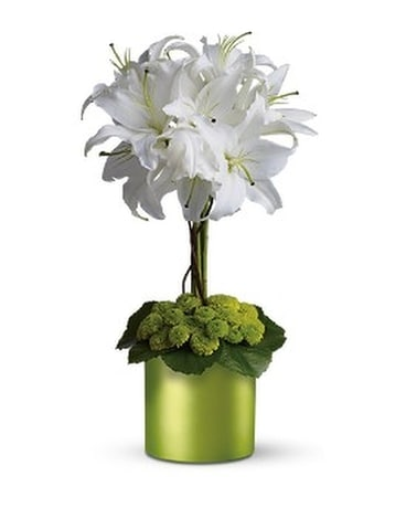 White Lily Topiary Flower Arrangement