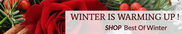 Winter is Warming Up! Shop Our Best of Winter Collection!