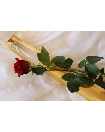 Premium Rose in the Golden Box - Flower Arrangement