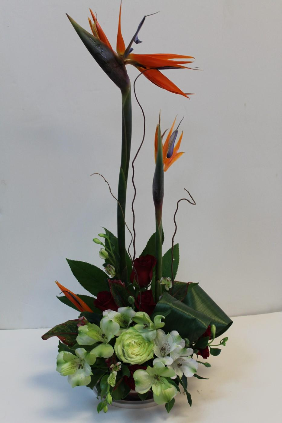 Birds of Paradaise Flower Arrangement