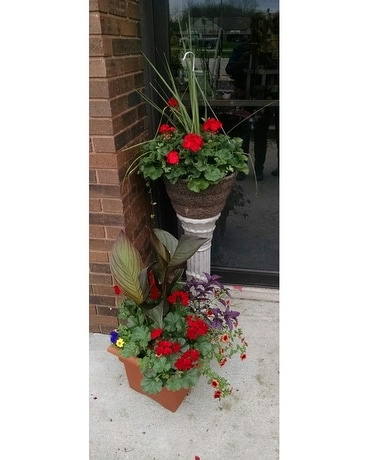 Blooming Outdoors plants Custom product