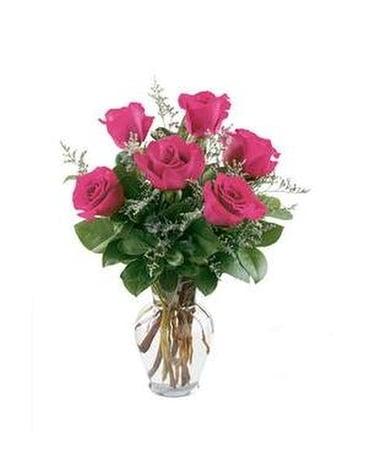 6 Hot Pink Roses Flower Arrangement