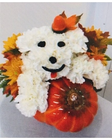 Pumpkin Puppy Flower Arrangement