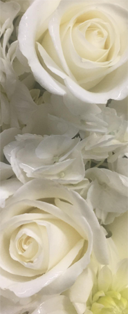 Collection of Sympathy and Funeral arrangements