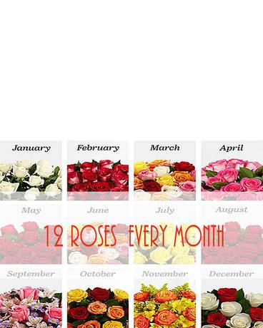 12 Roses Every Month!