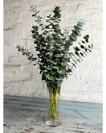 The Original Eucalyptus Bundle
