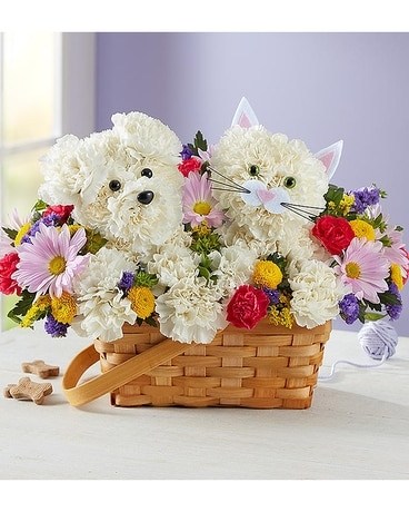 Paw-Some Pals Flower Arrangement