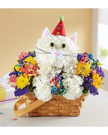 Party Cat Flower Arrangement