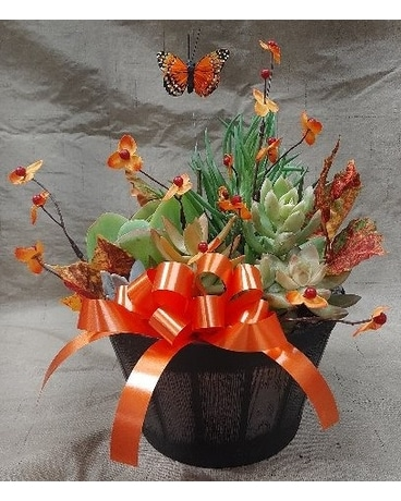 succulent fall planter Custom product