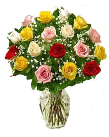 Rose Deal of the Day Flower Arrangement